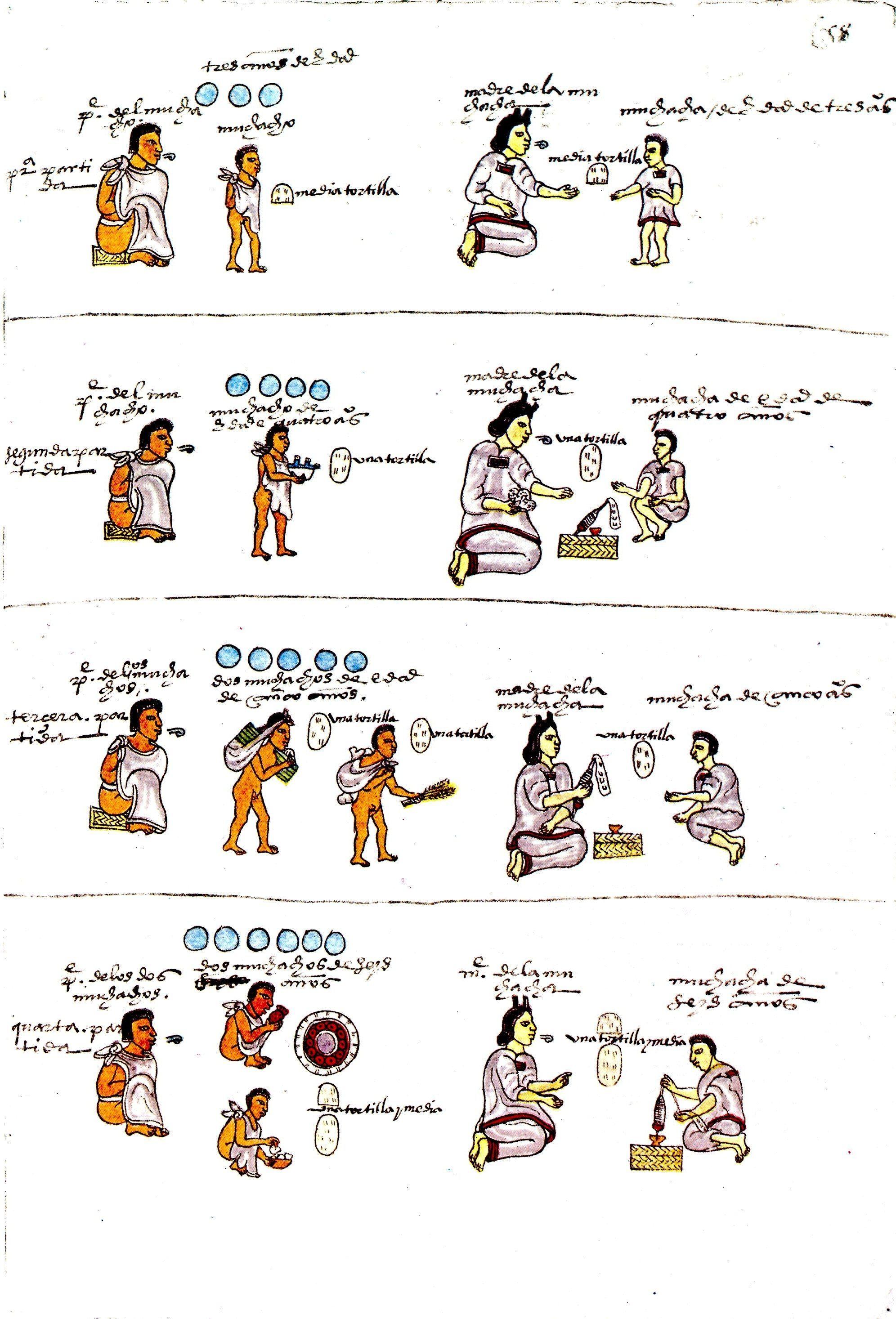 Codice Mendocino Lam 59 Dominio Publico Aztecas Dibujos