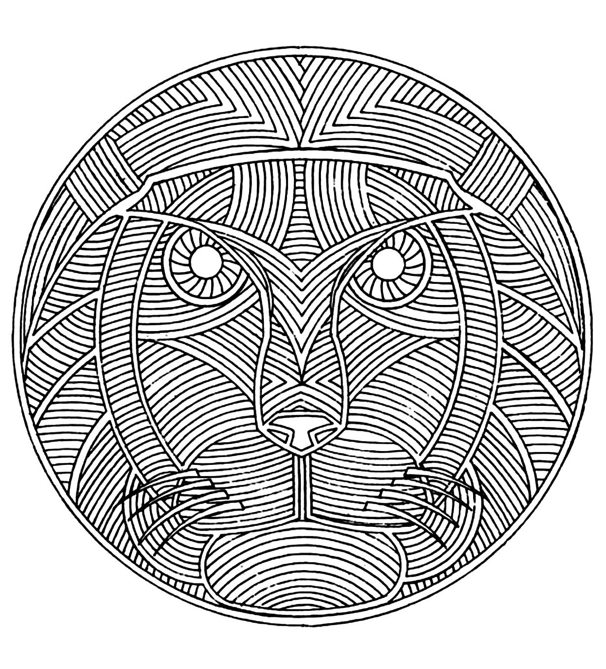 Discover Our African Designs Adult Coloring Pages Do You Know That This Continent Covers 20 Of The Earths Total Land Area And 15