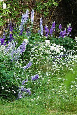 Great Colors In Small Spaces Dream Garden Flower Garden Design