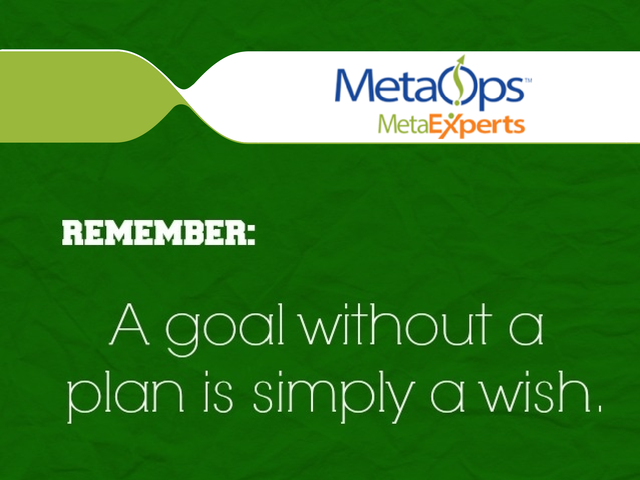 A goal without a plan is simply a wish.