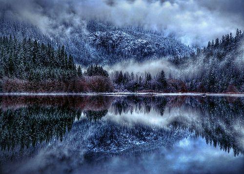 Grey Winter Winter Forest Winter Lake Winter Wallpaper