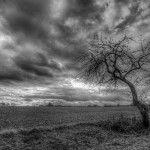 10 fantásticas fotografías en blanco y negro – Capítulo XII