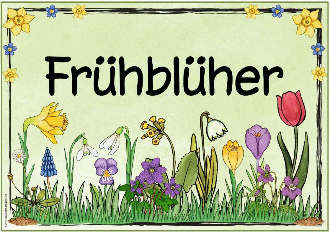 Pin Von Martina Wehrhofer Auf Sachunde Fruhbluher Grundschule