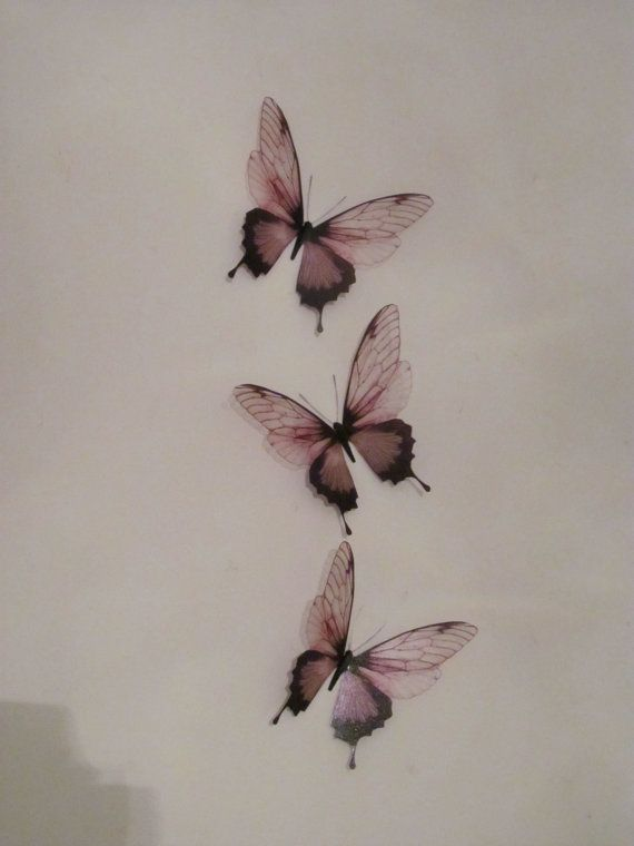 3 luxury amazing in flight butterflies 3d butterfly wall. Black Bedroom Furniture Sets. Home Design Ideas