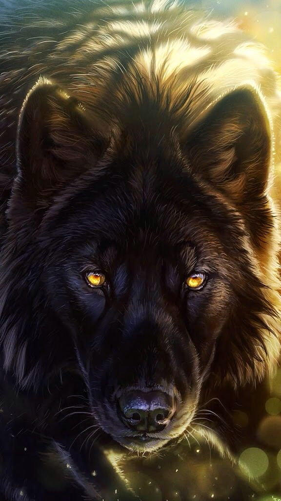 Golden Eyed Wolf Animal Illustration Fantasy Wolf Wolf Pictures