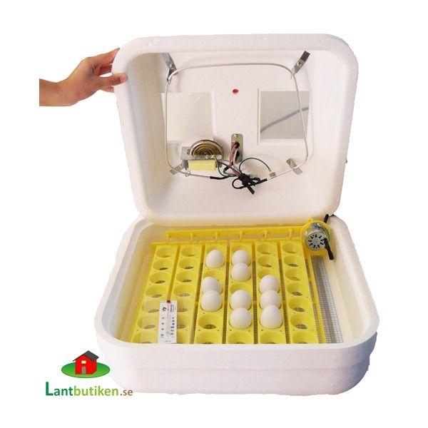 Äggkläckningsmaskin Hova Bator Pro 42A  Äggkläckningsmaskin
