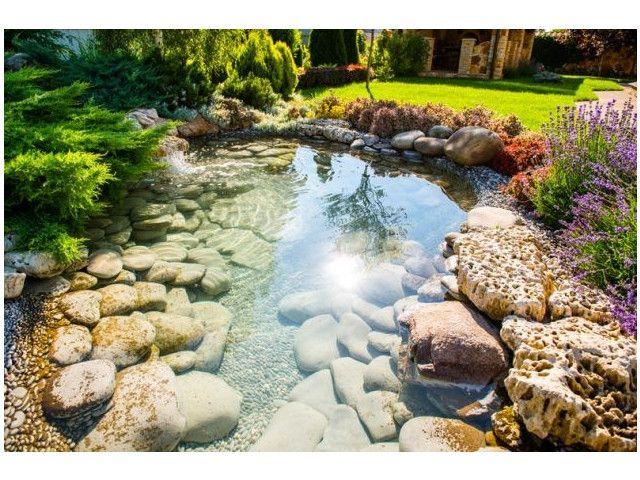 les plus beaux bassins de jardins 45 jolies idées | plantations et