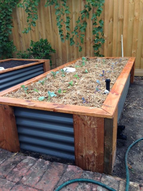 Building The Wicking Beds Wicking Garden Bed Wicking