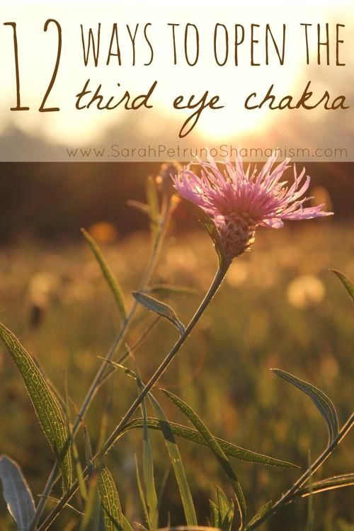 12 Ways to Open the Third Eye Chakra - get ideas, gain insight, and grow. Find all 12 ways at www.SarahPetrunoS...