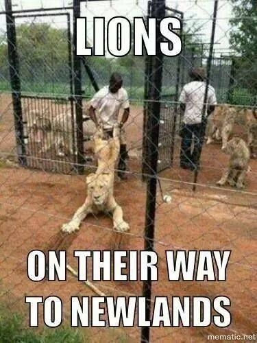 Pin By Nadine Kriel On Funny Pictures In 2020 African Jokes Rugby Jokes Jokes