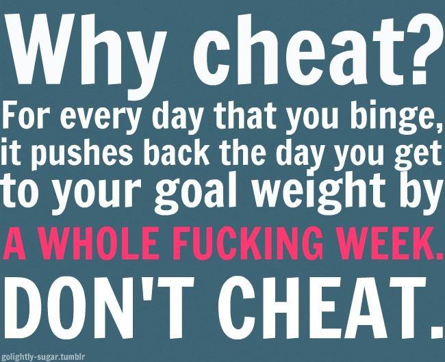 cheat diät