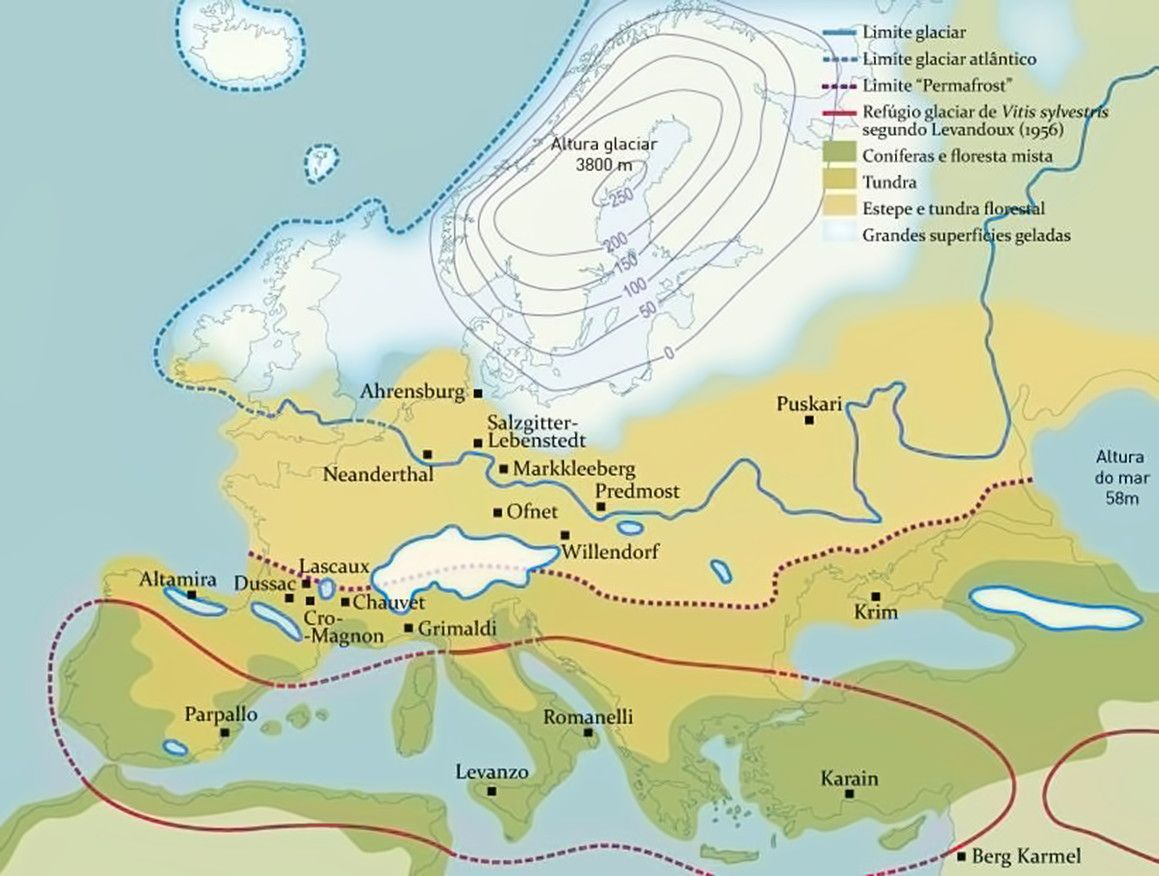 European Studies Essays – Welfare State and the European Nations
