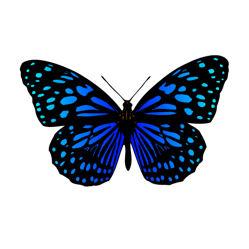 Butterfly Free Png Images With Transparent Background Blue Butterfly Blue Butterfly Tattoo Unique Butterfly Tattoos