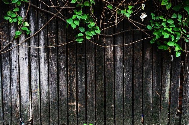 Wood texture background Premium Photo | Premium Photo #Freepik #photo #background #pattern #abstract-background #frame #woodtexturebackground