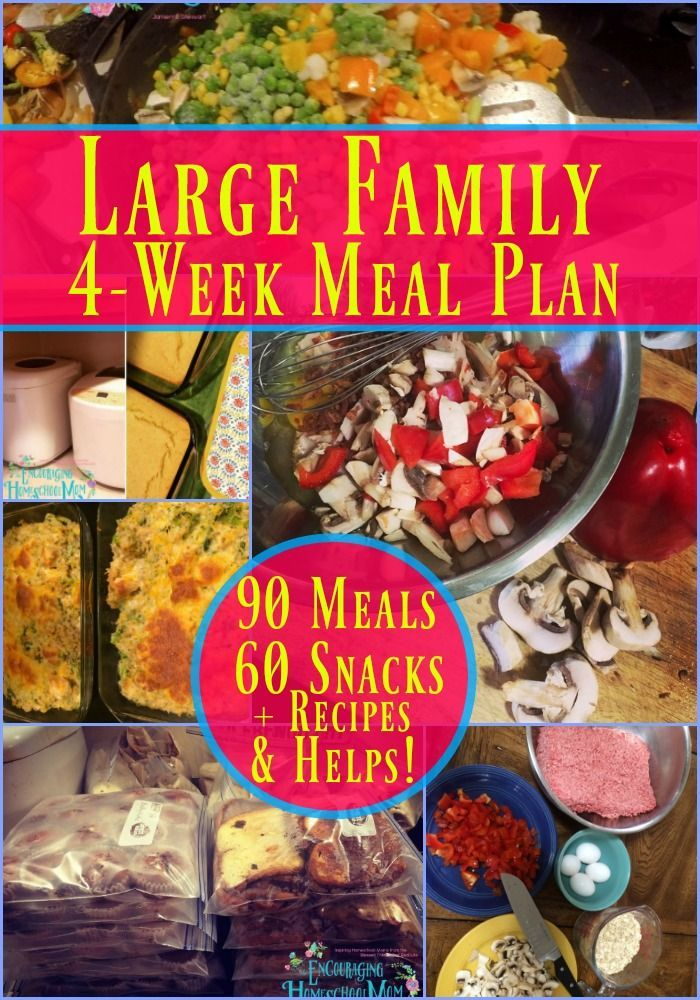 Large Family Meal Plan 4 Weeks 90 Family Meals 60 Snacks Recipes