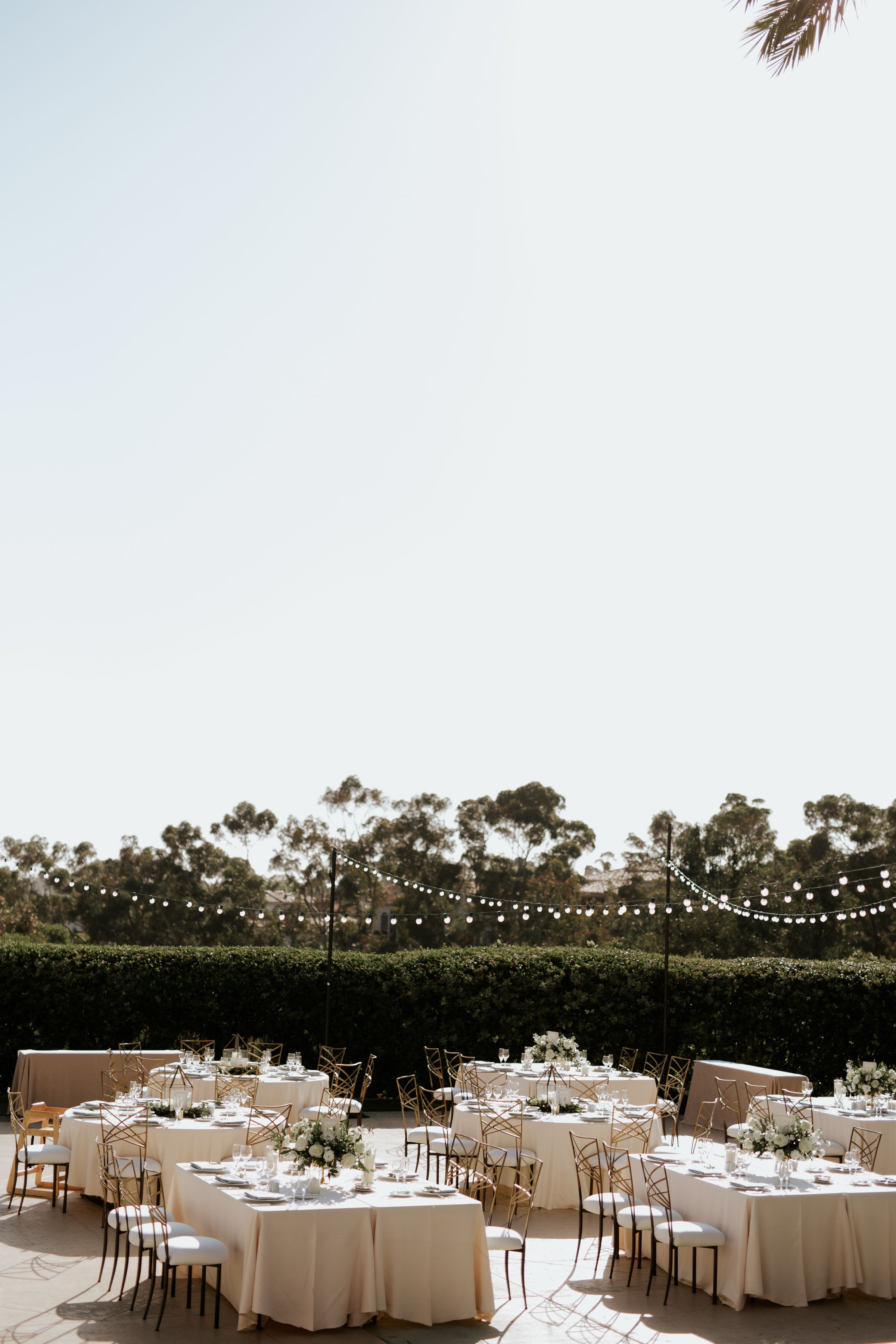 Pin by Park Hyatt Aviara Resort & Spa on Wedding Palm