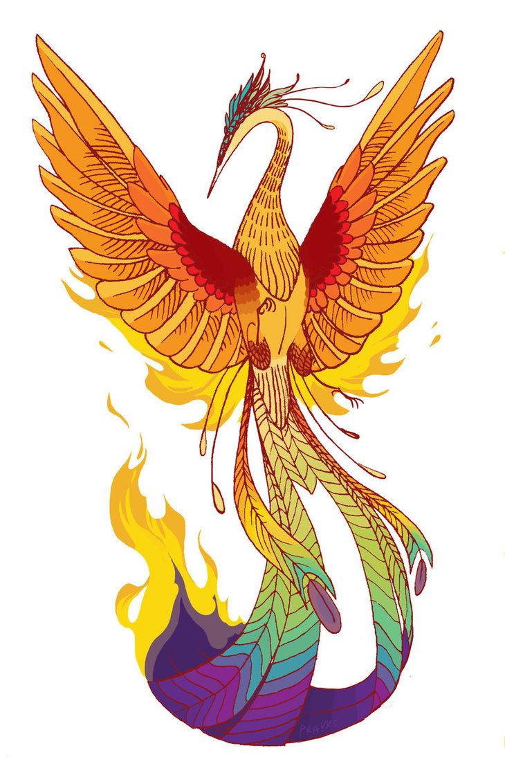 Colorful phoenix tattoo designs - Free Designs Colorful Phoenix With Wide Wings Wallpaper Picture 16562