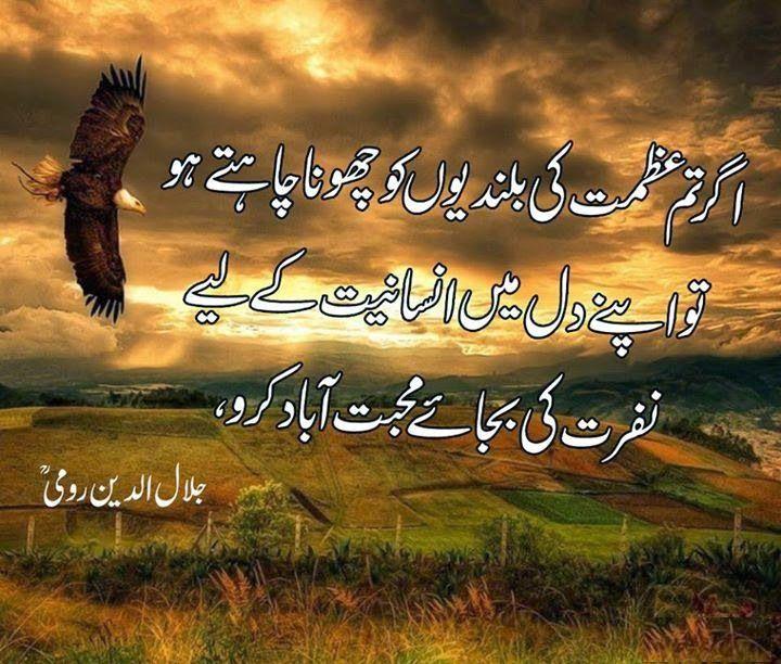 Maulana Rumi Quotes In Urdu Ghouri Pinterest Rumi Quotes Urdu