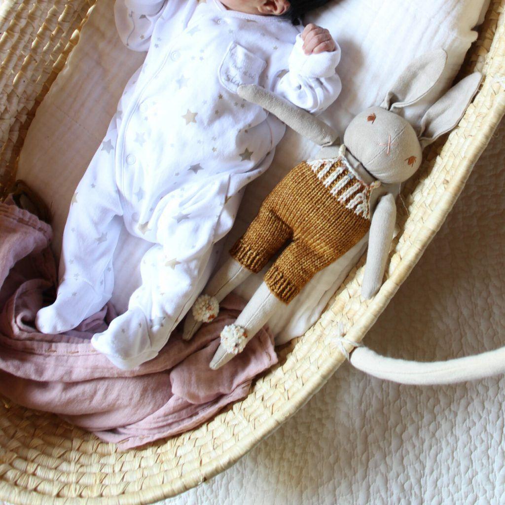 活躍している育児アイテム トッポンチーノとかごクーファンが可愛く便利 赤ちゃん ベビーグッズ クーファン
