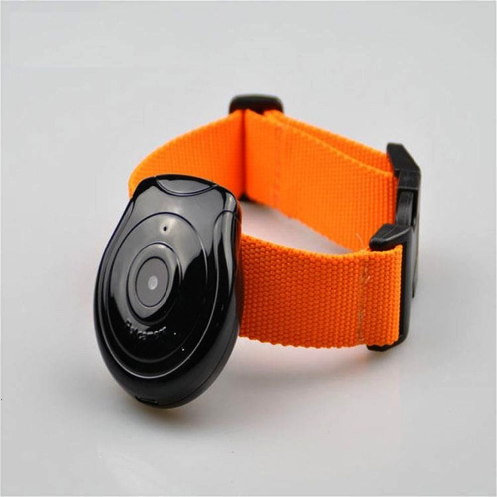 Pet Collar With Mini HD Camera 4480 only  Tag pets lovers Active link in BIO Useful Pet Collar With Mini HD Camera 4480 only  Tag pets lovers Active link in BIO Shopping...
