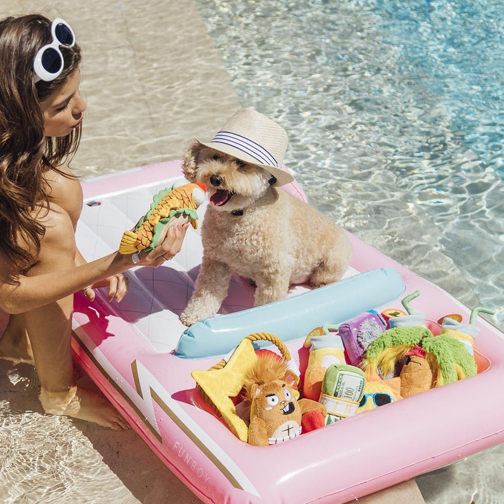 Convertible Dog Float For Dogs Barkshop Dog Pool Cool Pool