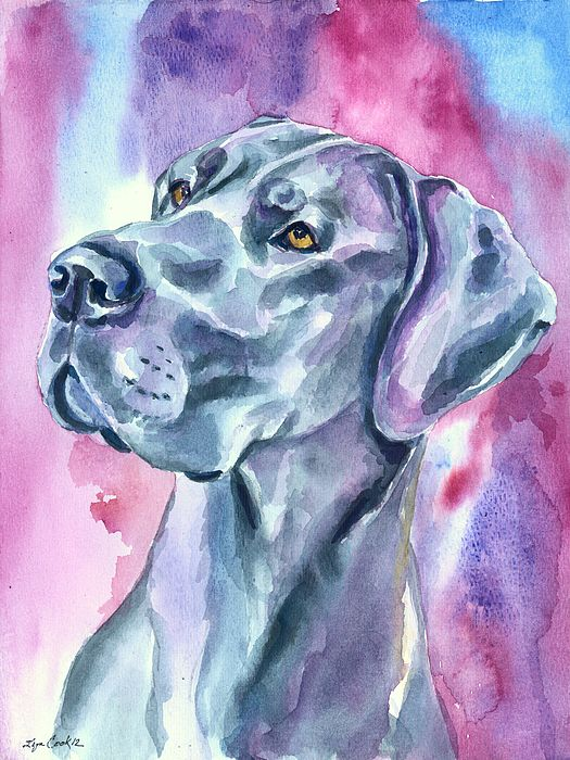 Blue Mood Great Dane By Lyn Cook Dane Dog Great Dane Dogs