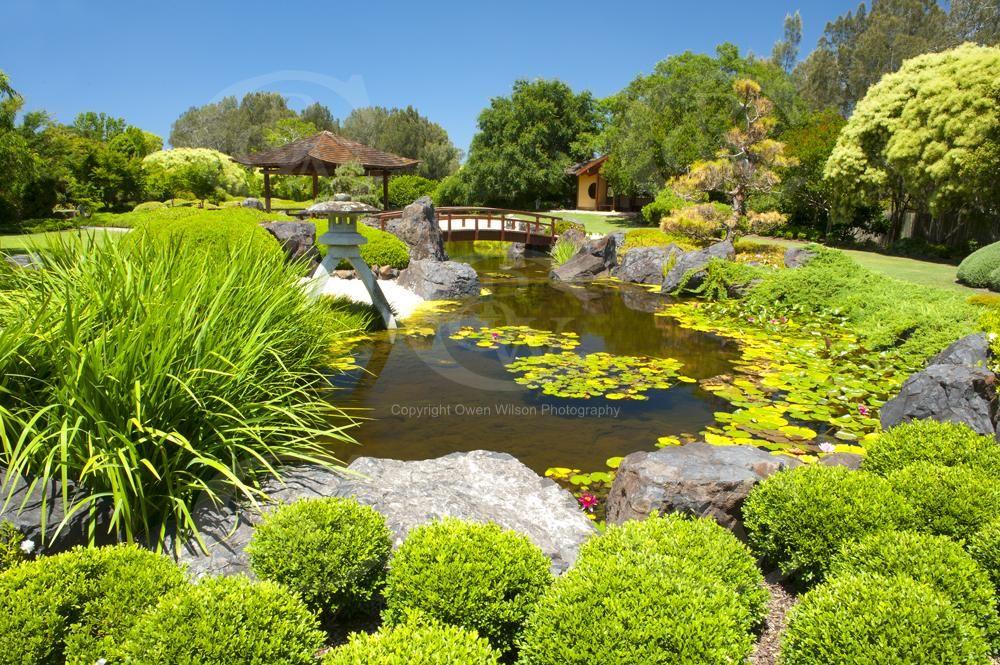 c2fe0777e46f6fbf0927c5d646616c9f - Japanese Gardens Art Gallery East Gosford