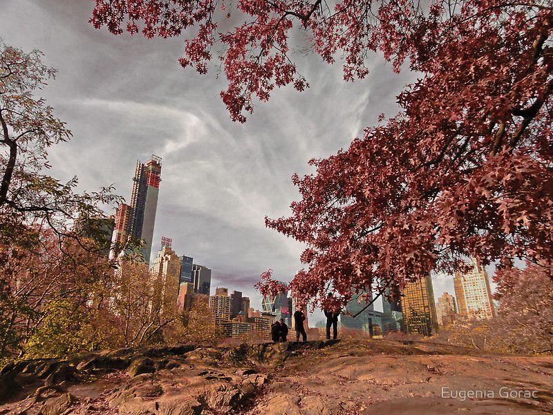 new york осенью: 22 тыс изображений найдено в Яндекс.Картинках