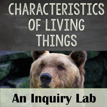What Characteristics Do All Living Things Share Each Specimen Has One Characteristic Of Living Things But Only The Living Specimens Will Demonstrate All