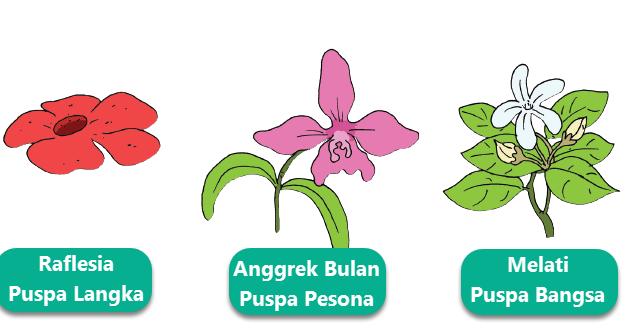 18 Gambar Bunga Mawar Mozaik Pembelajaran 3 Subtema 4 Pertumbuhan Dan Perkembangan Download Kamar Tidur Cina Rose Desain Buatan Gambar Mosaik Gambar Bunga