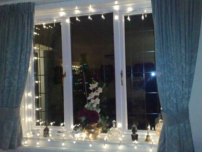 strings of lights and white orchids christmas christmas window decorations christmas window. Black Bedroom Furniture Sets. Home Design Ideas