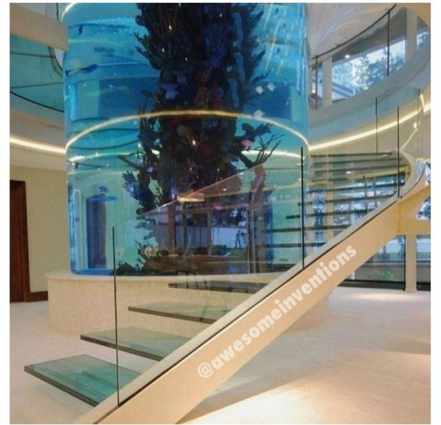 Awesome fish tank house ideas pinterest fish tanks for Fish tank house
