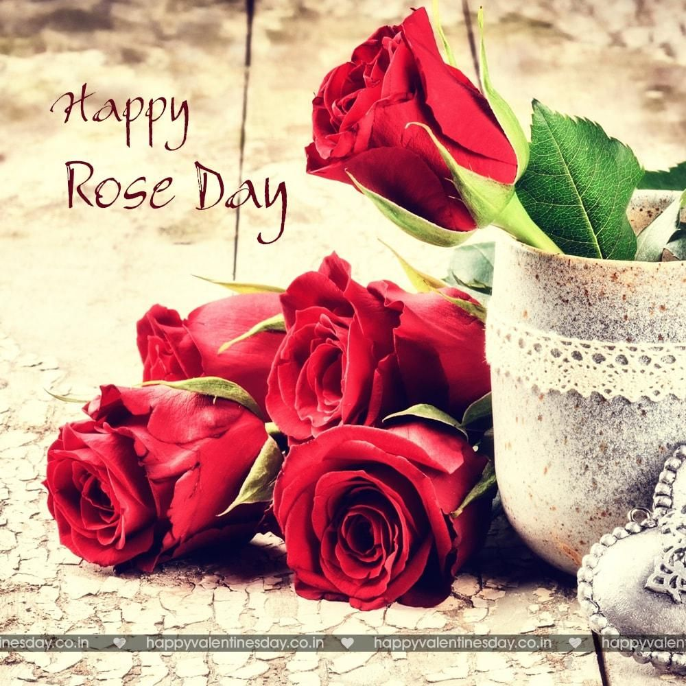 Rose Day free greetings Happy valentines day pictures