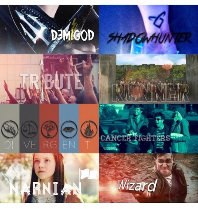 Percy Jackson and the Olympians, The Mortal Instruments, The Hunger Games, The Maze Runner, Divergent, The Fault In Our Stars, The Chronicles of Narnia, and Harry Potter