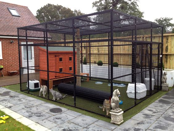 Outdoor Cat Enclosure Pvc