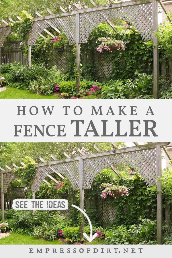 How to Make a Fence Taller for Better Privacy | Empress of ...