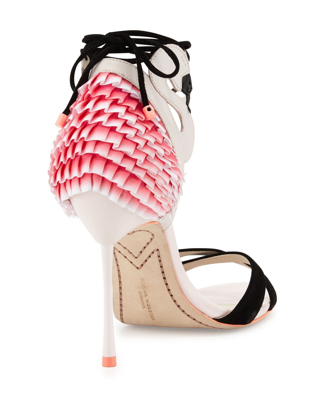 a7d852b46af Flamingo Frill Ankle-Wrap Sandal Heavenly Pink   Flamingos   Ankle ...