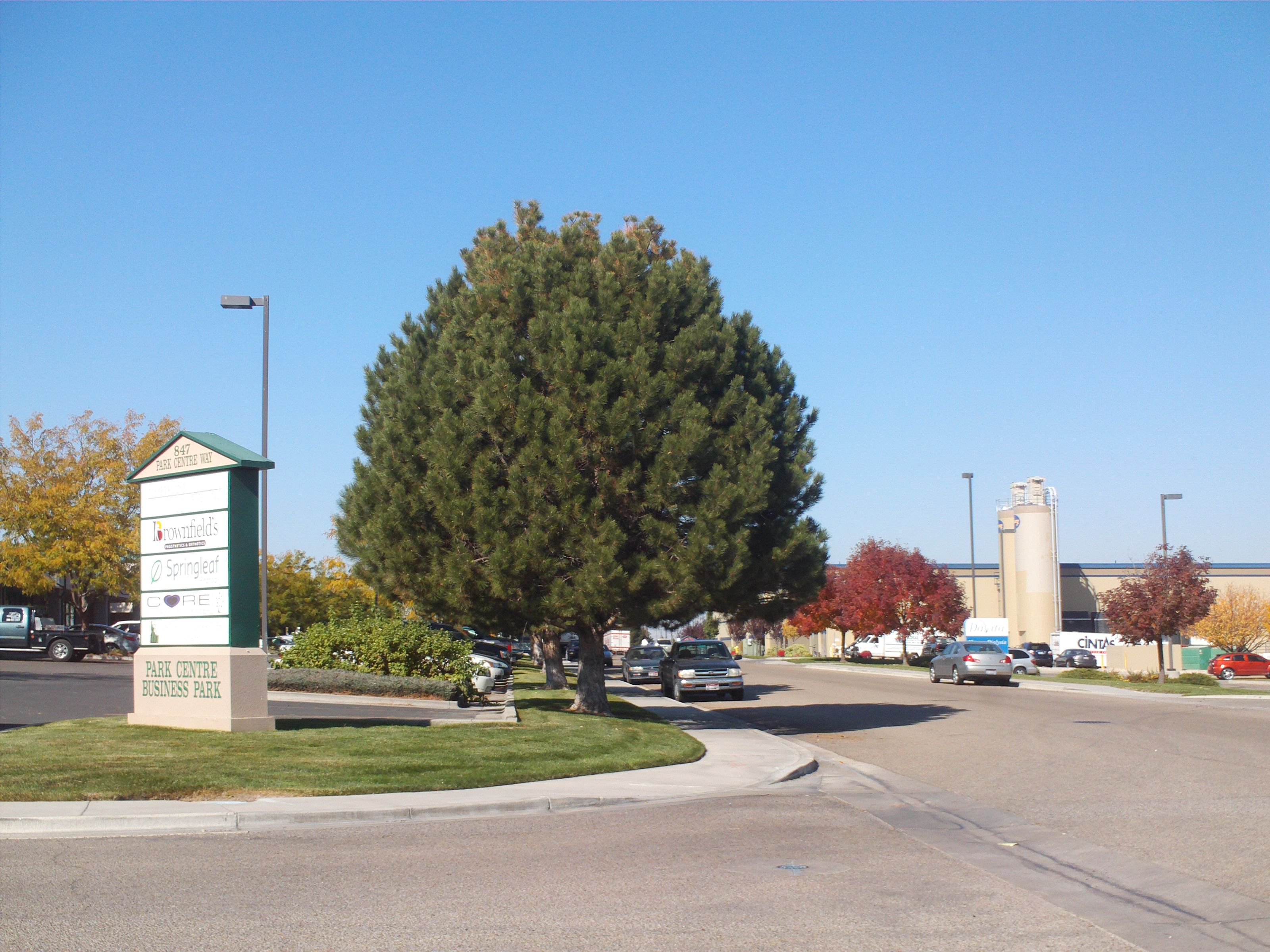 Pin on PTS 1-1000 TREES OF THE TREASURE VALLEY OF BOISE IDAHO