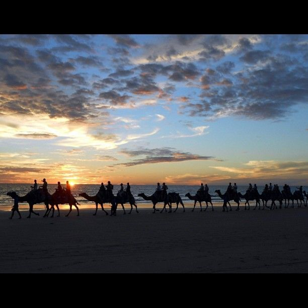 Una caravana de camellos transporta a unos turistas en un safari durante el atardecer por Cable Beach ubicado cerca de la ciudad australiana de Broomey donde se ven espectaculares puestas de sol sobre las arenas blancas. Foto: Reuters
