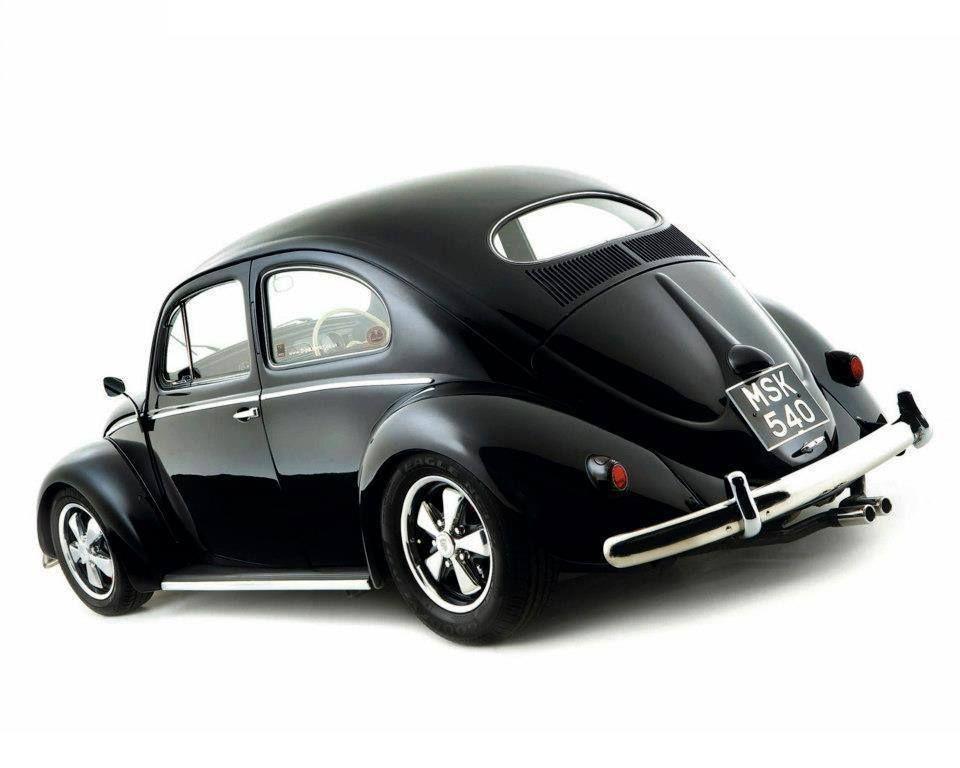 Black oval beetle