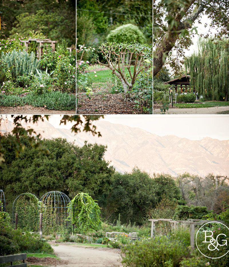 Gene & Tim, Descanso Gardens Wedding, La Canada Flintridge Wedding ...