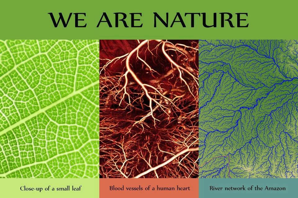 We are nature!