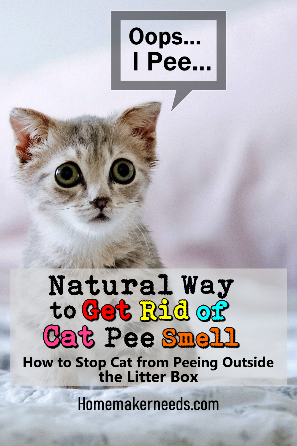 Cat Urine Odor Natural Removal Tips In 2020 Cat Pee Smell Cat Urine Cat Pee