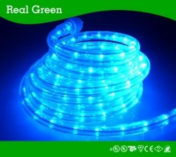 Led Rope Light Smd5050 Led Strip Rope Light 12v 24v 120v Real Green Lighting Company Limited Led Rope Lights Led Down Lights Flexible Led Strip Lights