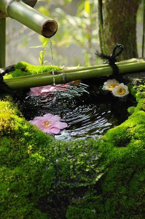 L'eau vive, toujours présente dans un jardin Japonais.
