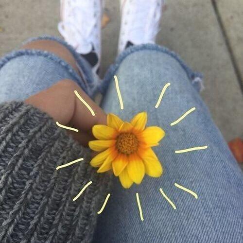 [ Qual é a sua flor favorita?    #Citação #Snap #Snapchat #Vida #Mundo #Menina & #Arte         ʚĭɞ        (Esta imagem não me pertence!)