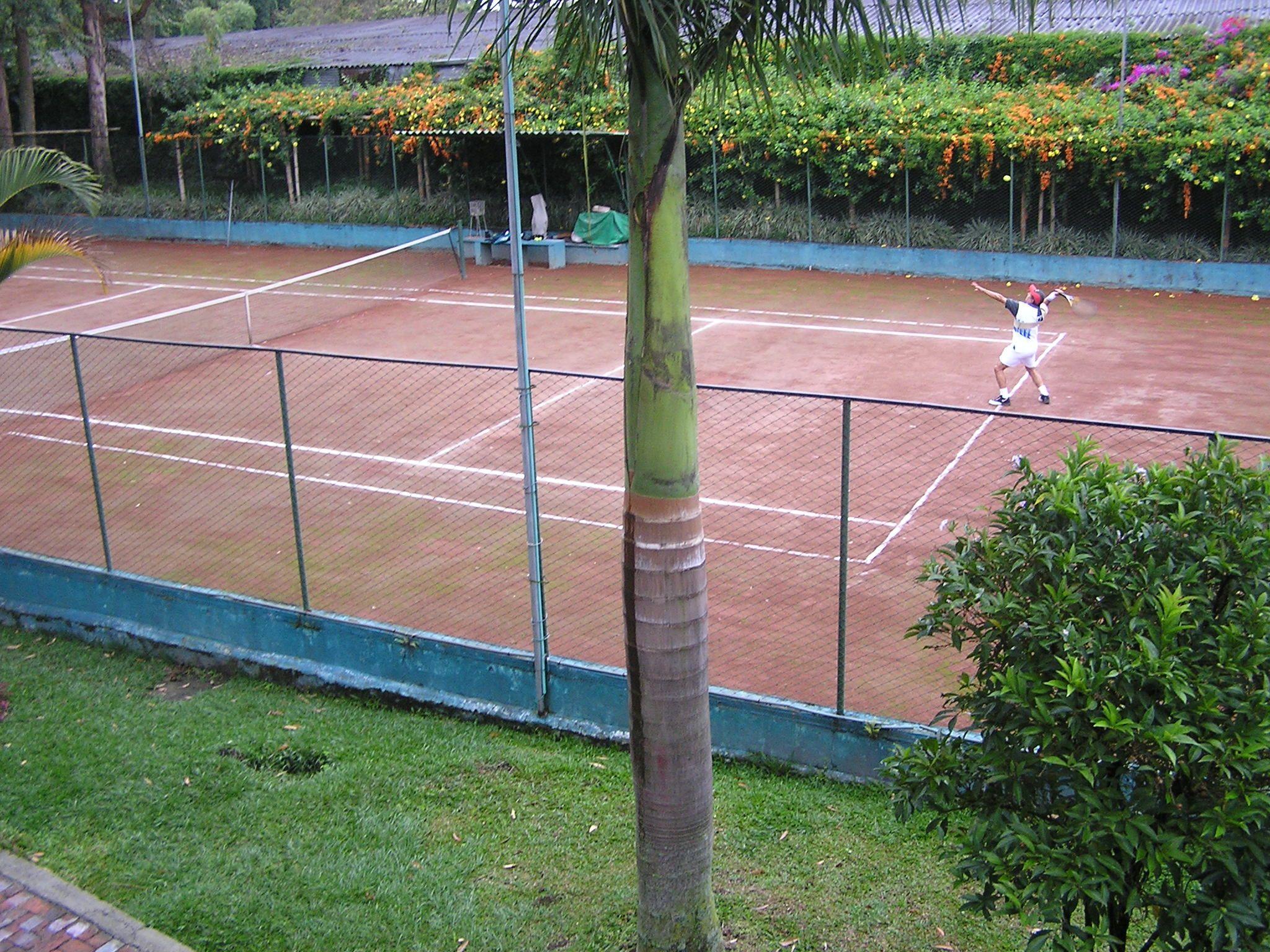 Cacha de Tenis