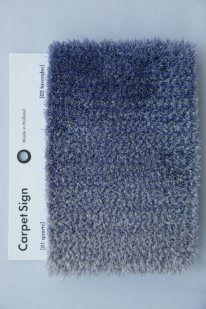 Caméléon by @carpetsign :new colours 2013