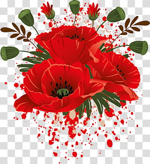 Poppy Garden Roses Flower Drawing Red Flower Transparent Background Png Clipart In 2020 Rose Flower Png Flower Drawing Family Flowers