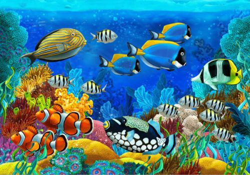 Aquarium Corals Fish Underwater 3d Full Wall Mural Photo Wallpaper Home Dec Kids Underwater Wallpaper Underwater Painting Fish Painting